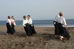Entrenamiento en la playa (2010)